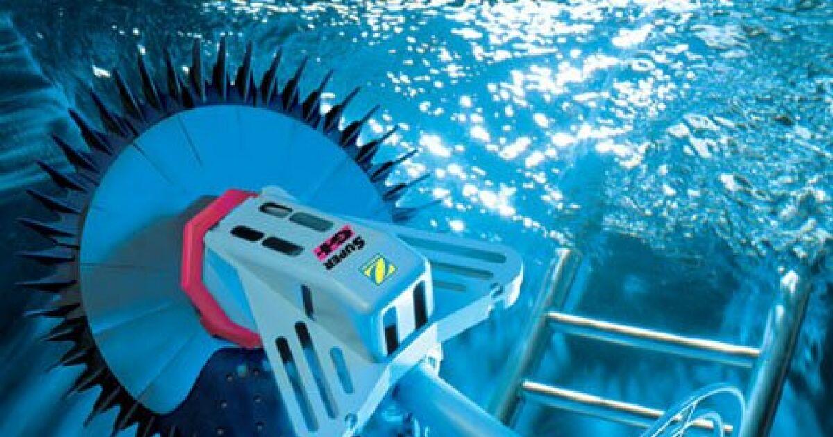 R capitulatif quels accessoires pour bien nettoyer sa for Accessoire piscine 33