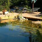Réglementation sur la piscine naturelle