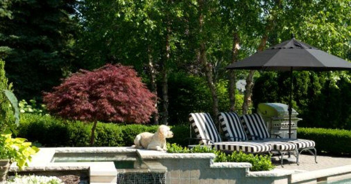 Awesome amenagement jardin avec piscine photos for Amenagement d un jardin