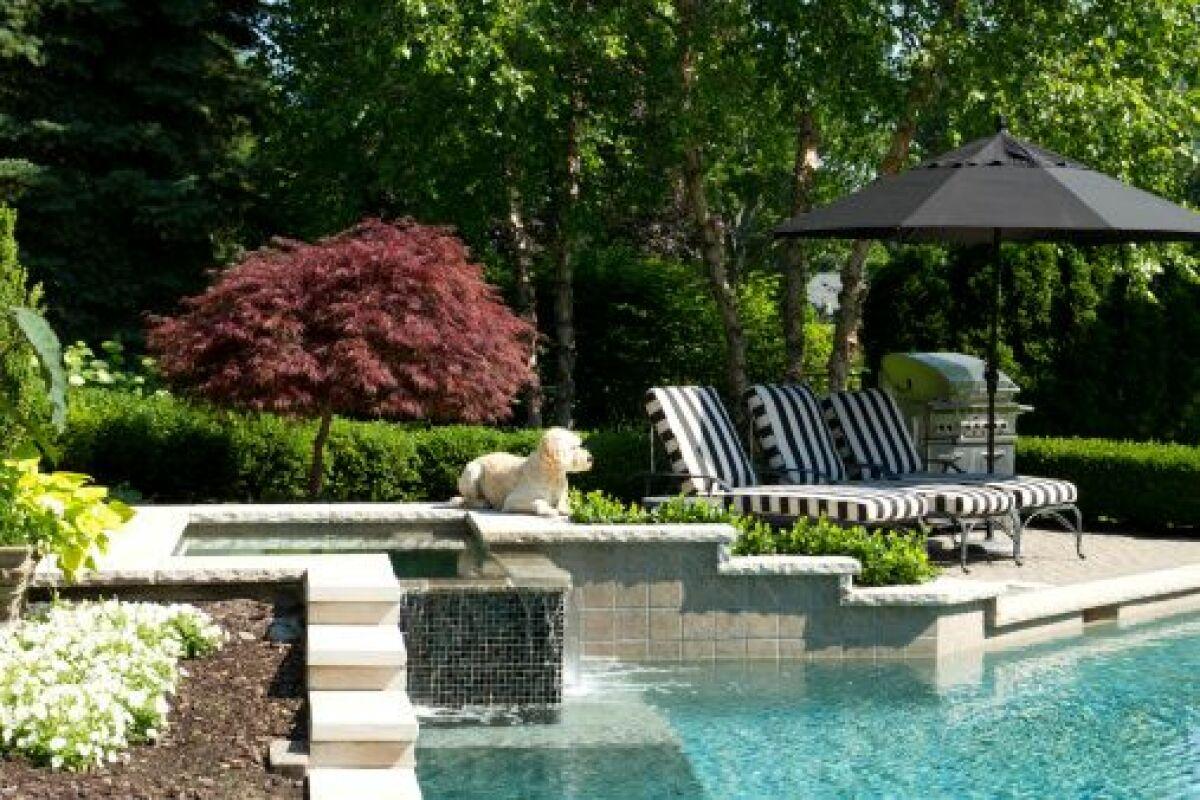 Amenagement Jardin Avec Piscine Bois réussir l'aménagement d'un jardin avec piscine - guide