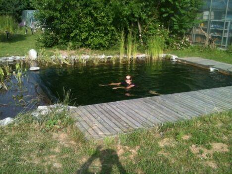 "Rêves Aquatiques à Oberschaeffolsheim<span class=""normal italic petit"">DR</span>"