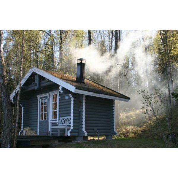 Le choix d 39 un sauna ext rieur for Sauna finlandais exterieur