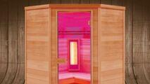 Nouveauté Poolstar : sauna Multiwave
