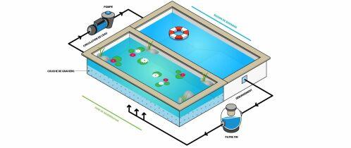 Schémas fonctionnement piscine naturelle