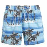 Short de bain bleu pour homme motif palmiers Tuamotu (Vilebrequin été 2013)