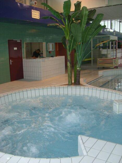 stade nautique de la faisanderie piscine fontainebleau