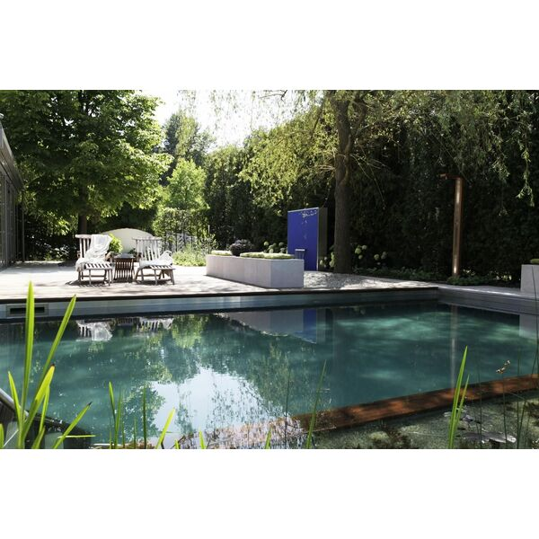 tarif et co t d une piscine naturelle. Black Bedroom Furniture Sets. Home Design Ideas