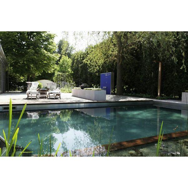 transformer une piscine classique en bassin de baignade naturel. Black Bedroom Furniture Sets. Home Design Ideas
