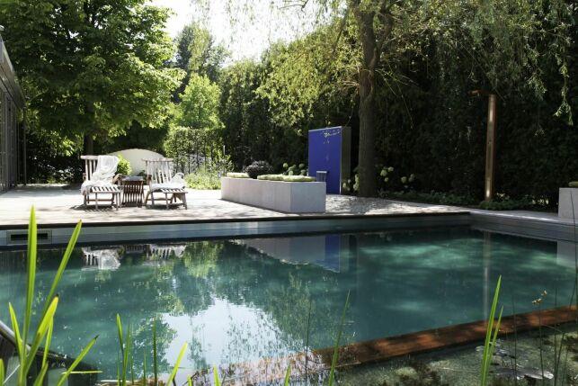 Transformation d'une piscine classique en bassin de baignade naturel