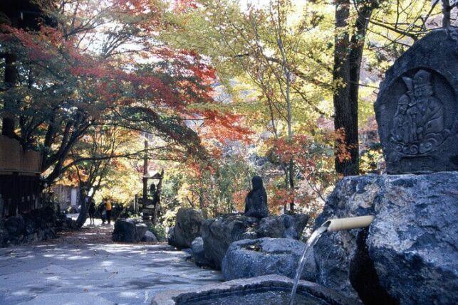 Un bain chaud en pleine nature au Japon
