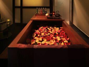 Le bain japonais