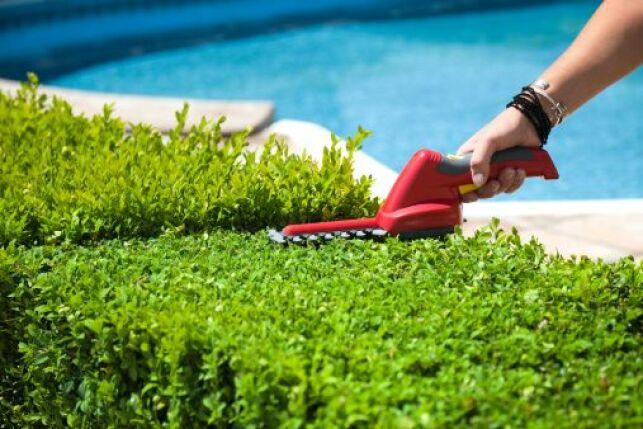 Un filet anti-feuilles pour piscine