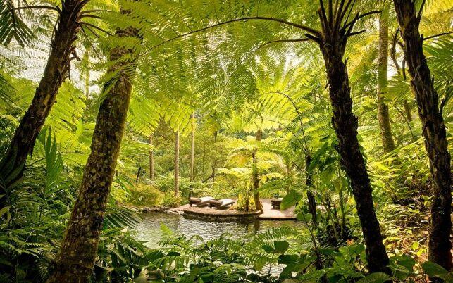 Un moment de détente au coeur de la jungle balinaise au Como Shambhala Estate