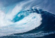 Un petit geste pour une grande cause : « Un Océan de Vie »