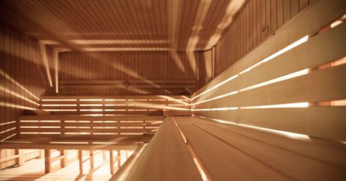 Le sauna traditionnel vapeur le choix du po le au feu de bois - Sauna infrarouge ou traditionnel ...
