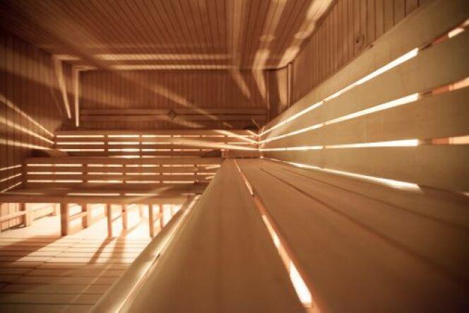 le sauna traditionnel vapeur le choix du po le au feu. Black Bedroom Furniture Sets. Home Design Ideas