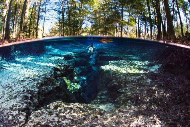 Une baignade dans les sources de Ginnie Springs