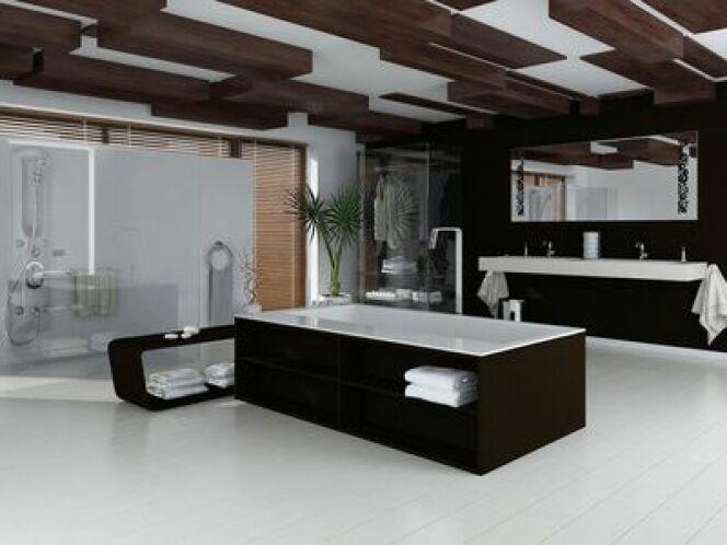 """Une baignoire balnéo noire est un élément de décoration indispensable pour une salle de bain design.<span class=""""normal italic petit"""">© XtravaganT - Fotolia.com</span>"""