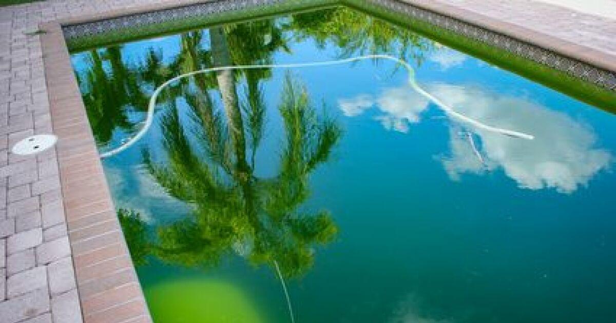 Une eau de piscine verte for Eau verte piscine hors sol
