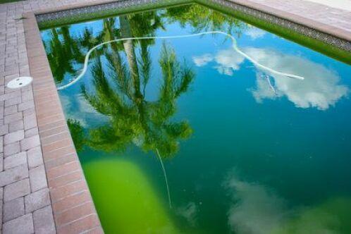 Une eau de piscine verte