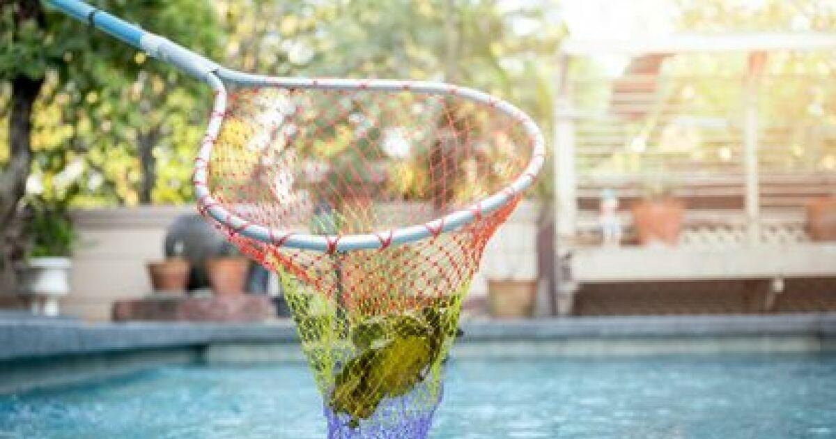 produit une puisette pour l entretien de la piscine