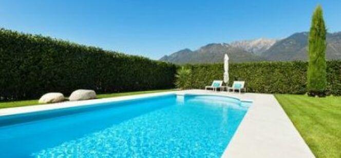 """Une haie autour de la piscine : les clés d'une installation réussie<span class=""""normal italic petit"""">© alexandre zveiger - Fotolia.com</span>"""
