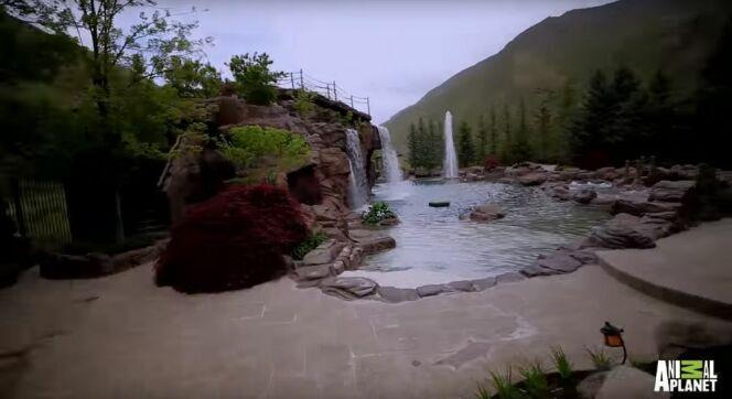 Une magnifique piscine privée à l'air naturel