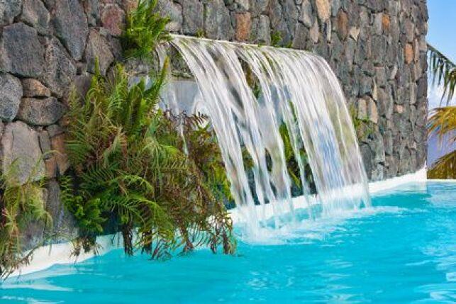 La piscine à l'aspect naturel est très décorative pour le jardin.