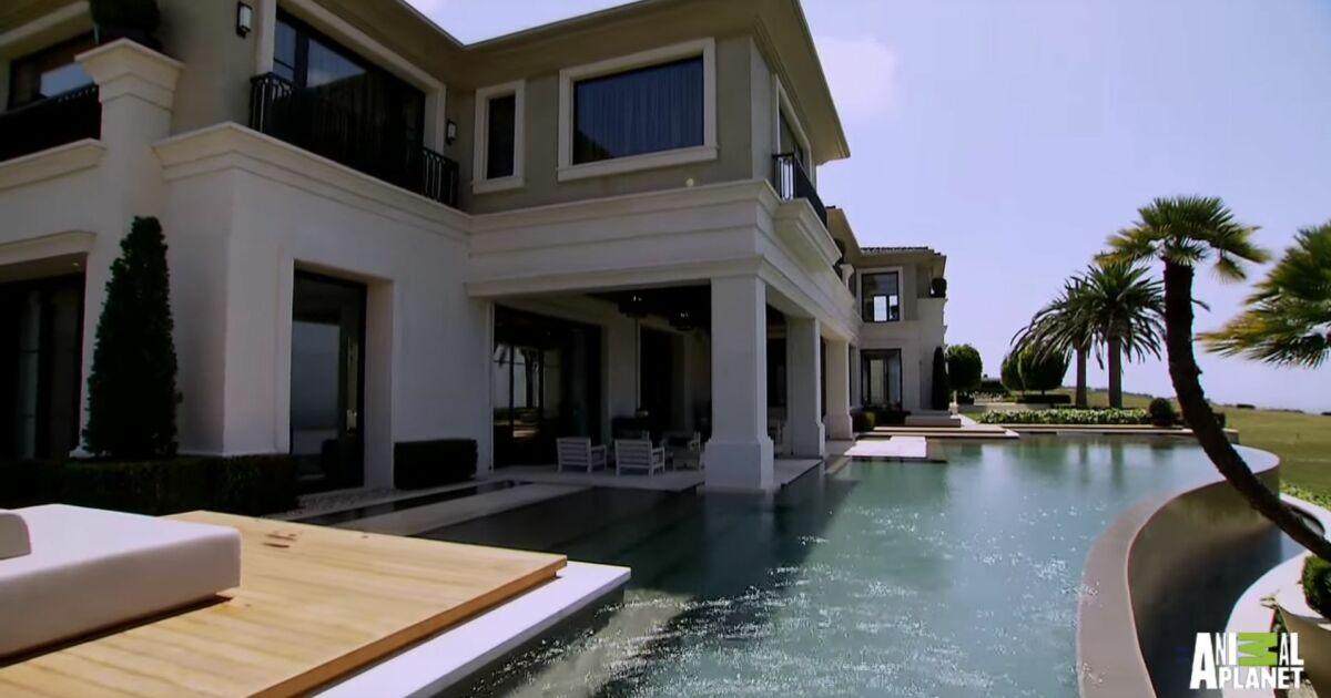 D couvrez cette magnifique piscine de luxe for Piscine en anglais