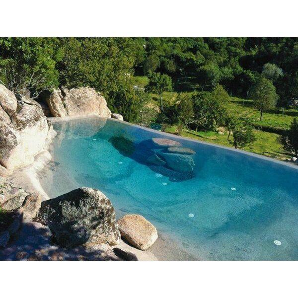 Une piscine avec faux rochers d coratifs for Rocher decoratif pour jardin