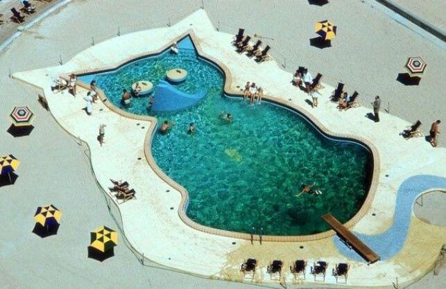 Une piscine en forme de chat.