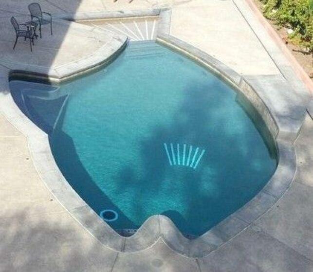 Une piscine en forme de poisson