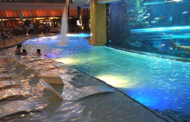 Une piscine pour nage un milieu des poissons et des requins au Golden Nugget Hotel