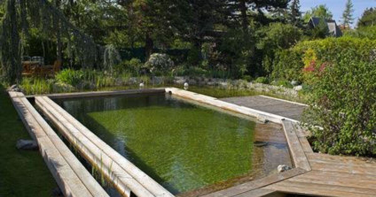 Une piscine sans chlore les diff rentes solutions for Traitement eau piscine