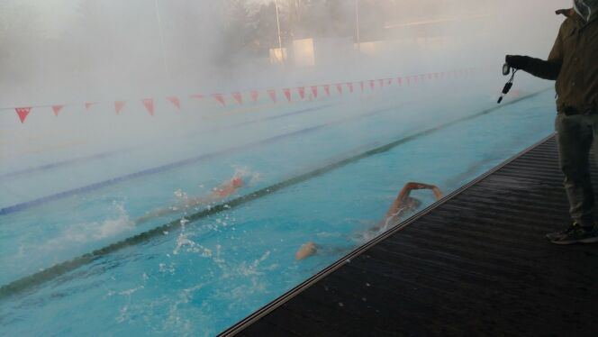 Une séance de natation au Mulhouse Olympic Natation par une matinée hivernale.