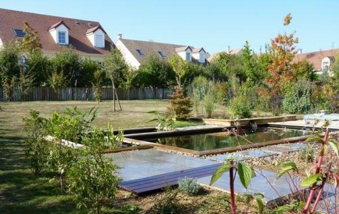 Unité harmonieuse de la piscine naturelle et du jardin © Patrick Lemaire Paysage