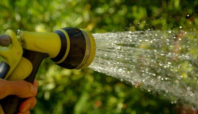Utiliser l'eau d'une piscine pour arroser son jardin