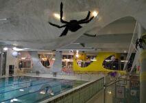 Halloween Party à la piscine des Weppes !