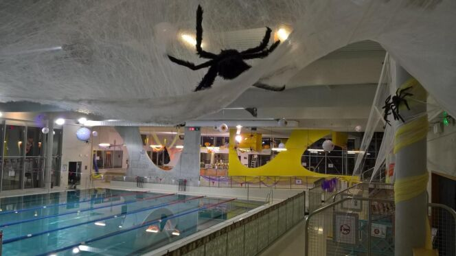 Vous pourrez plonger parmi les araignées...