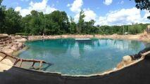 Cet homme a construit l'immense piscine dont il rêvait enfant